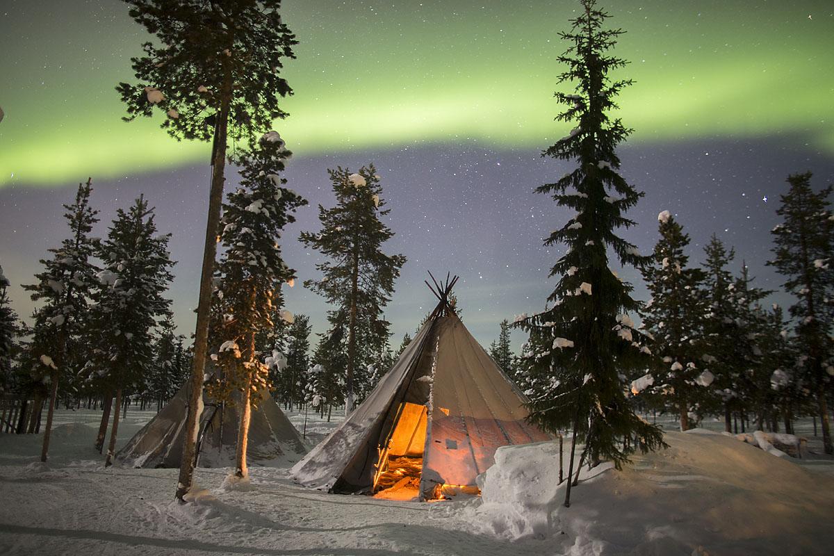 Aurora_Reindeer_camp