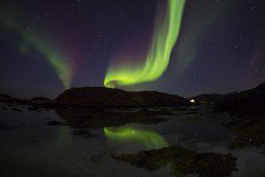 Hvalsafari Tromsø. Audun Rikardsen.